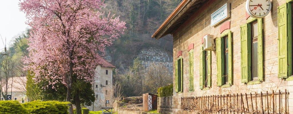 Viagem de um dia ao Castelo de Rajhenburg com chocolate e vinho de Bled