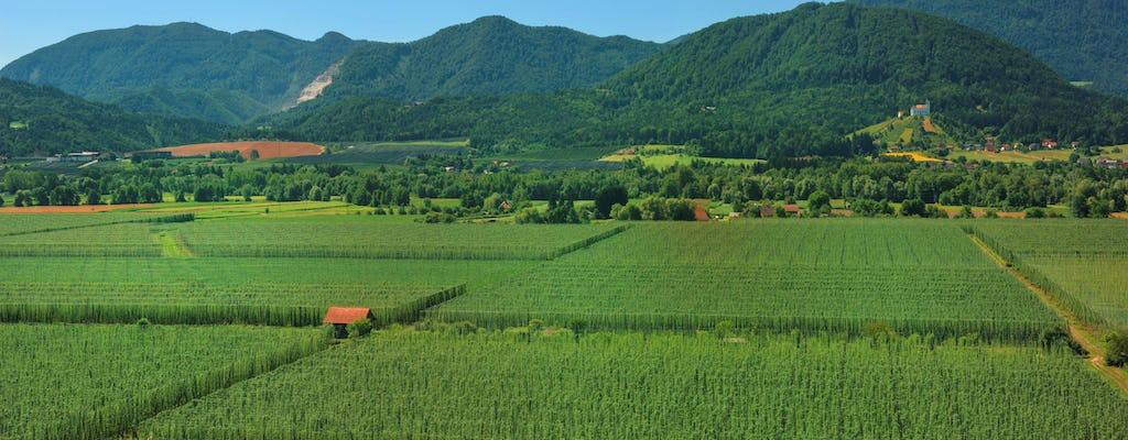 Ganztagesausflug von Ljubljana nach Zalec und Velenje