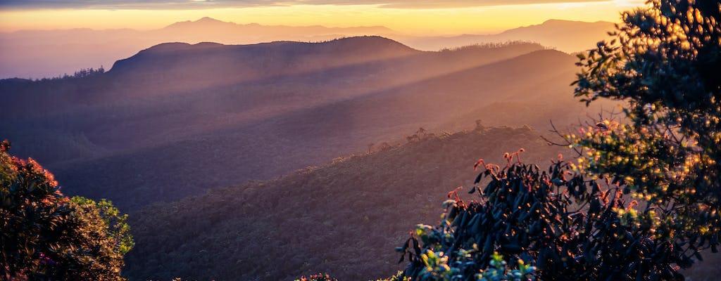 Horton Plains National Park Tour von Nuwara Eliya