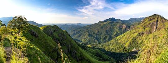 Tour di un giorno a Little Adam's Peak da Nuwara Eliya
