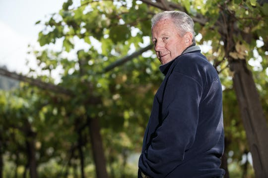 Geschiedenis van het wijnhuis door onze wijnen bij Monte Del Frà