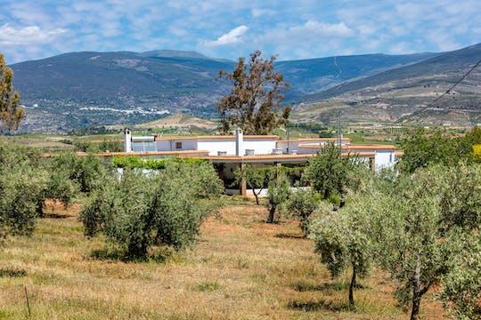 Almeria Wine & Tapas Tour