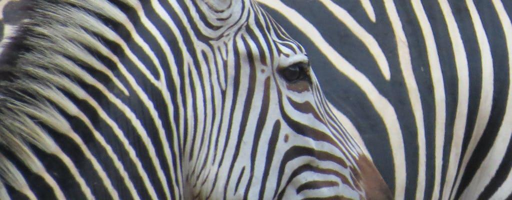 Зельрайне 3-дневное сафари из Занзибара