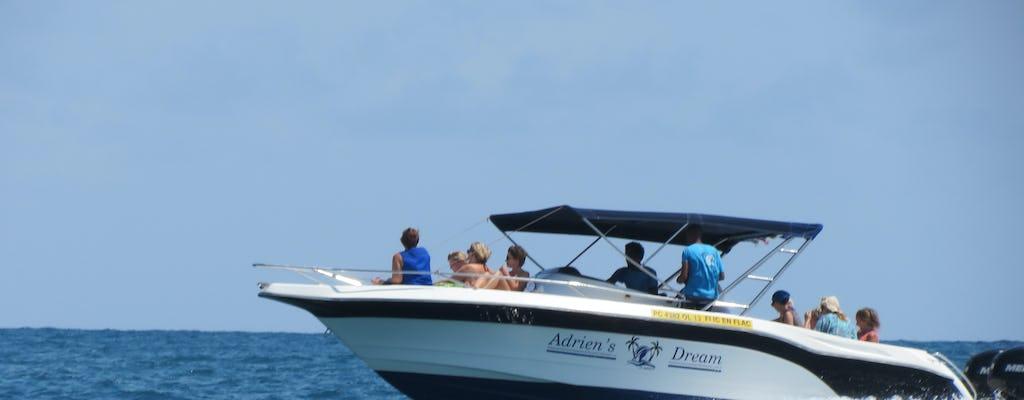 Prywatna wycieczka łodzią motorową z promieniami orła na Mauritius i obserwacją delfinów