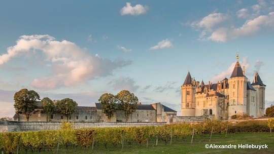 Entrance ticket to Castle of Saumur
