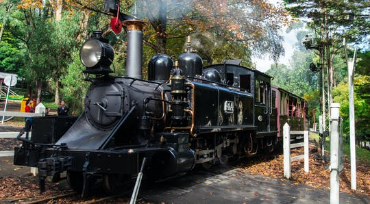 Puffing Billy and Healesville Sanctuary scenic bus tour