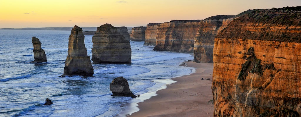 Great Ocean Road private car tour including 12 Apostles, forest walk and Aussie wildlife