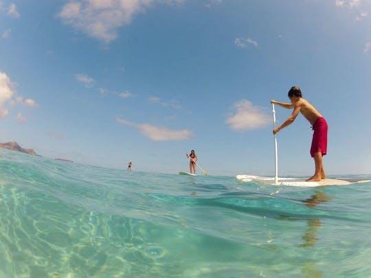 Surfing z wiosłem w Porto Santo