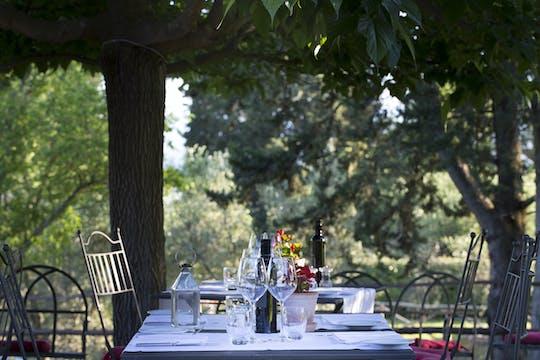 Wine and food experience at Castello di Fonterutoli