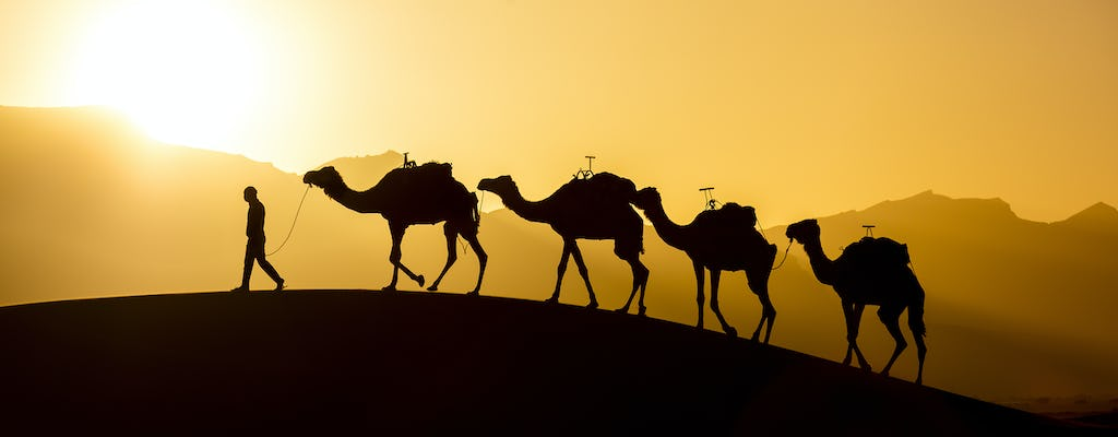 Agadir Sunset Camel Trek und BBQ Dinner