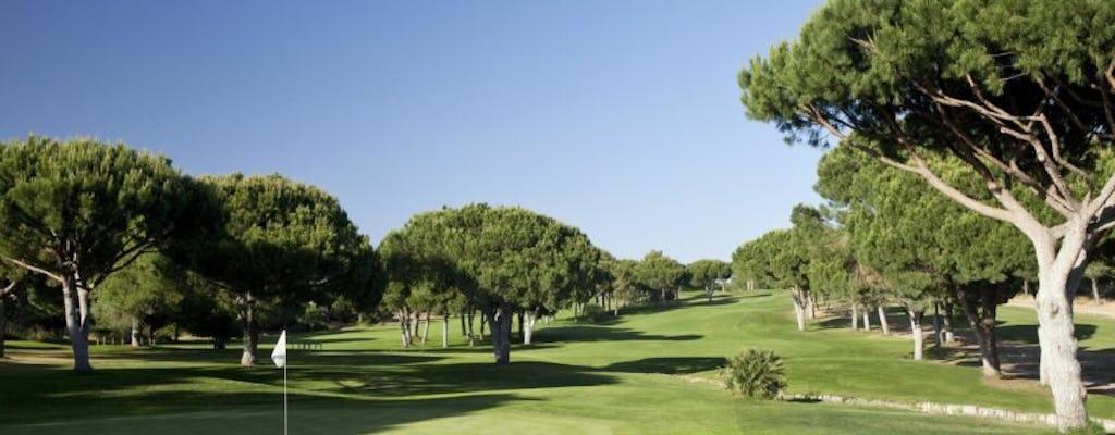 Pole golfowe Dom Pedro Golf Pinhal
