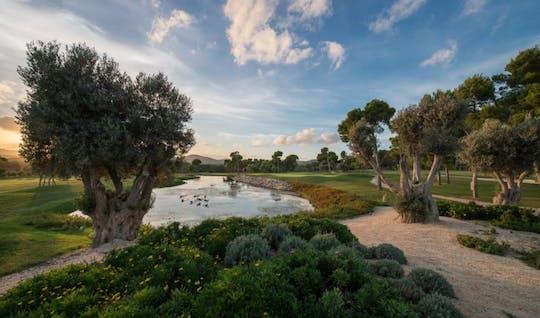 Campo da golf di Son Servera