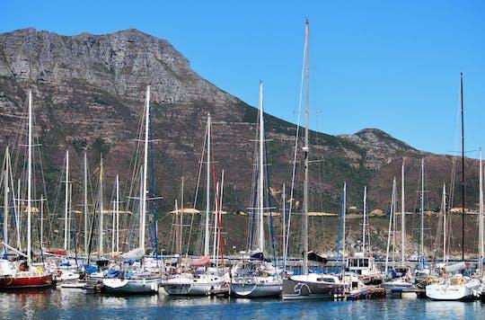 Tour privado de meio dia na Península do Cabo