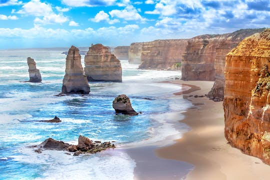 Great Ocean Road bus tour with 12 Apostles, forest walk, koalas, and more