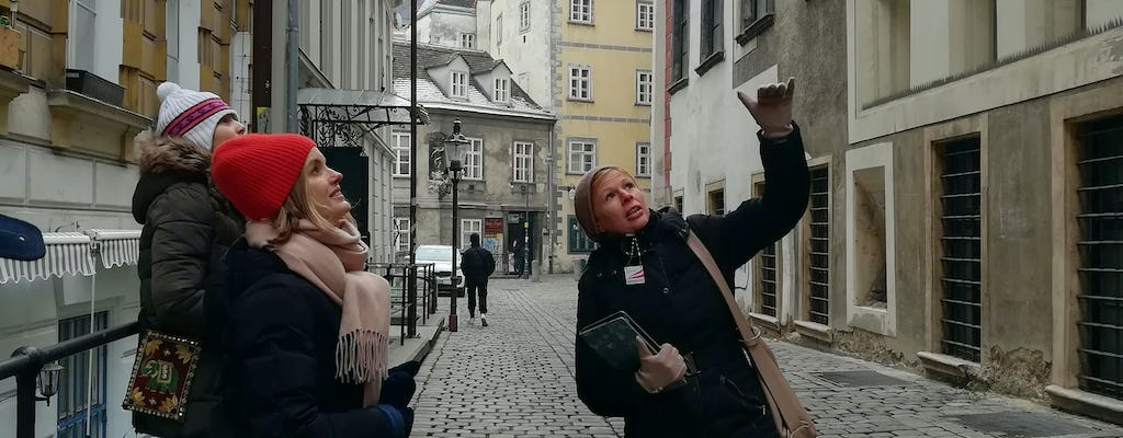 Vienna, City of Many Pasts: guided city tour with a friendly historian