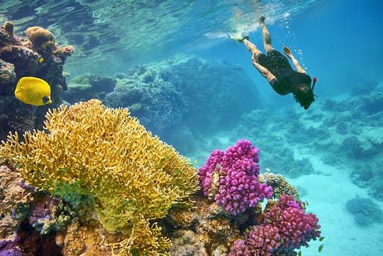 VIP snorkeling cruise