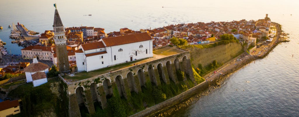 Visite des vins de l'Istra slovène depuis la côte slovène