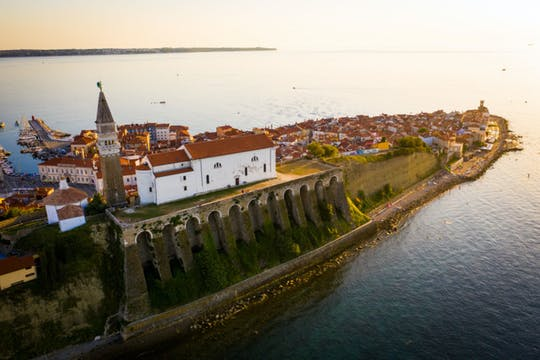 Словенский Истра винный тур от словенского побережья