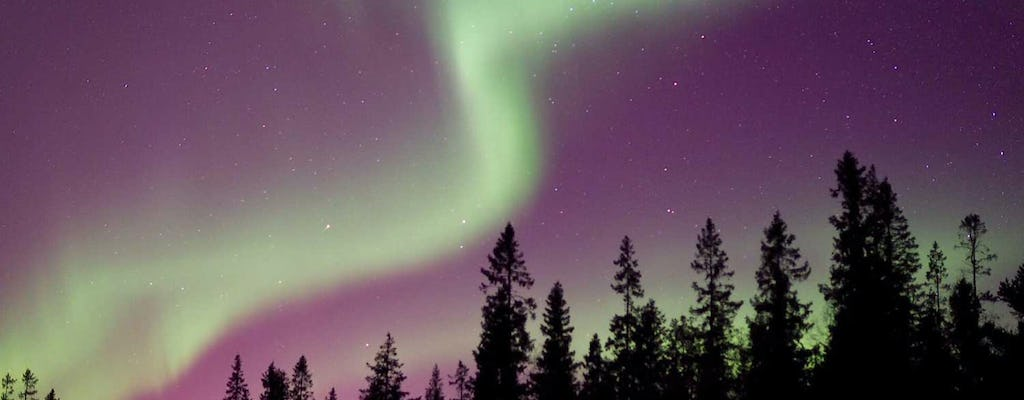 Northern Lights nature tour by car