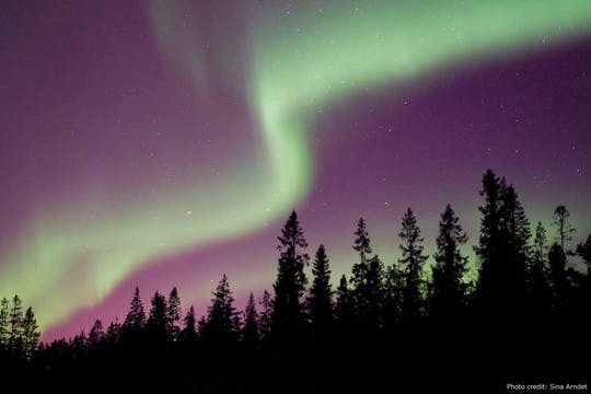 Tour por la naturaleza de la aurora boreal en coche