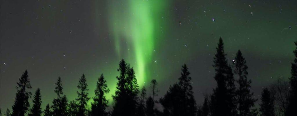 Northern Lights snowshoe nature walk