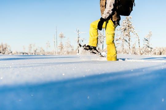 Tour por la naturaleza a pie con raquetas de nieve