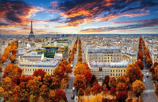 Paris in one day tour including Eiffel Tower, cruise, city tour and Louvre