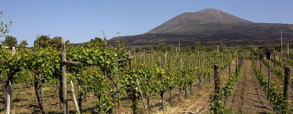 Везувий органических дегустация вин с обедом