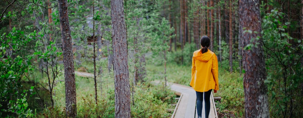 Guided forest trek in Multamäki