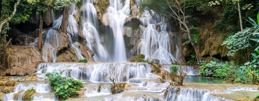 Full-day Pak Ou cave and Kuang Si waterfall trip