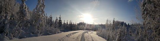Wędrówka w rakietach śnieżnych przez fiński las