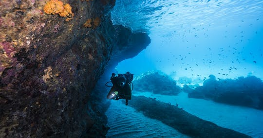 Tugboat and blue room snorkel tour Caribbean experience