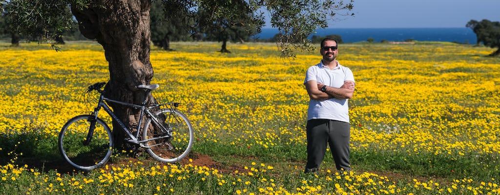 Велотур среди оливковых деревьев от Остуни