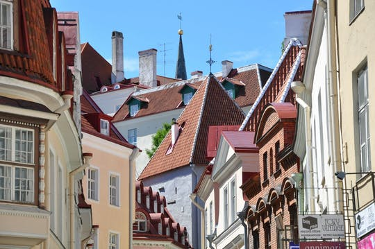 Tour architettonico a piedi di Tallinn con un locale
