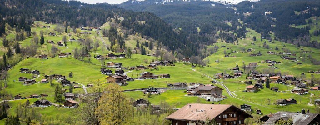 Recorrido por el fotogénico Interlaken con un local