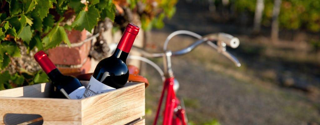 Passeio de bicicleta de dia inteiro em Saint Emilion