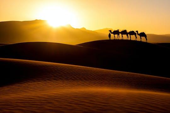 Meer, Sonnenuntergang & Wüstencamp