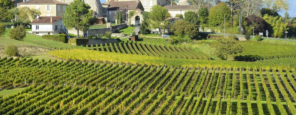 Tour do vinho pela manhã em Saint-Emilion