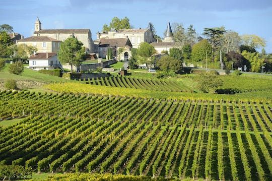 Morning wine tour to Saint-Emilion