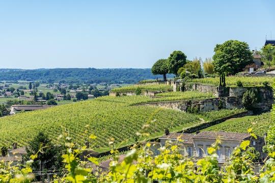 Afternoon wine tour to Saint-Emilion