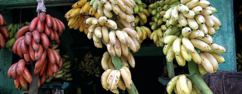 Madurai Food Trail
