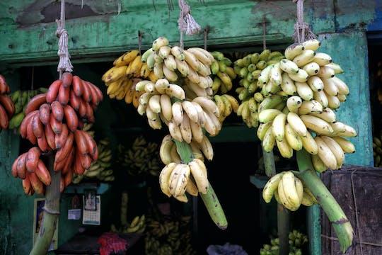 Sentiero gastronomico di Madurai