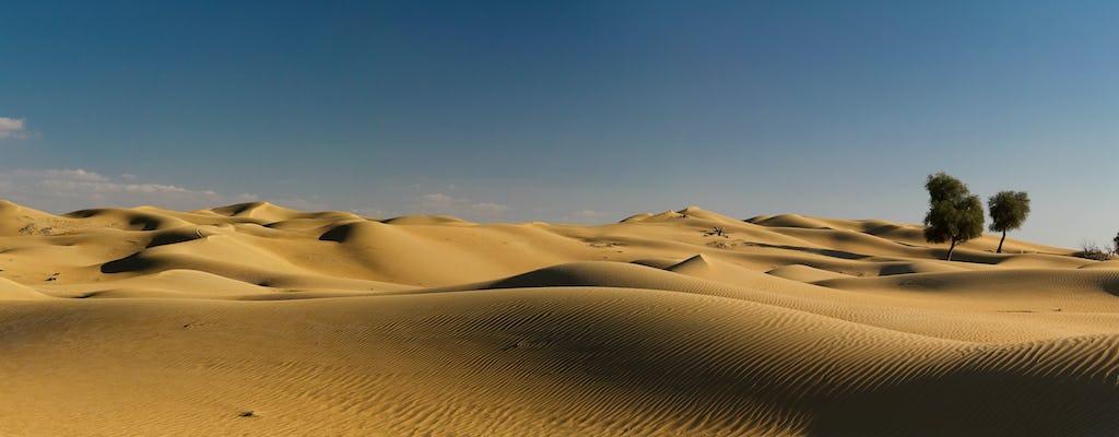 Safári premium no deserto com jantar de churrasco