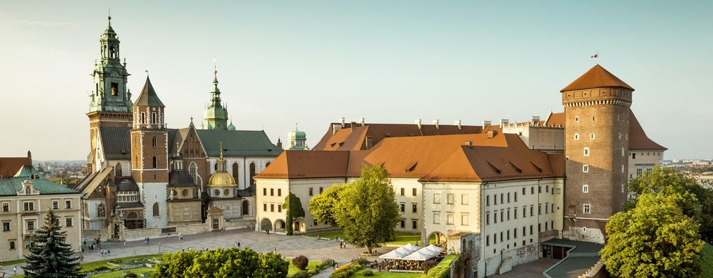 Visita guidata privata del castello di Wawel