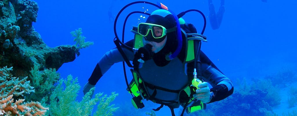 Diving in Aqaba for non-certified divers