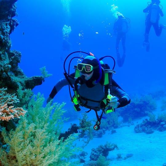 Mergulho em Aqaba para mergulhadores não certificados