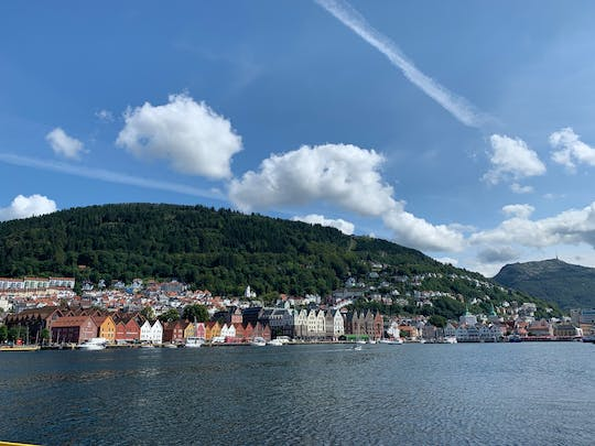 Private walking tour of Bergen past and present