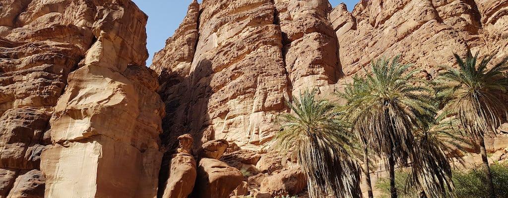 Excursion d'une journée dans la vallée de Wadi al-Disah