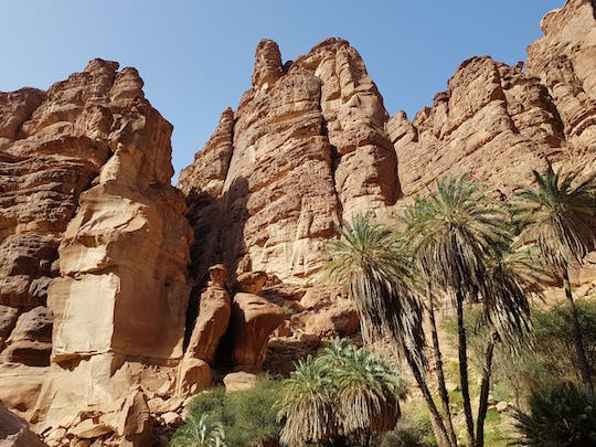Day trip to Wadi al-Disah Valley