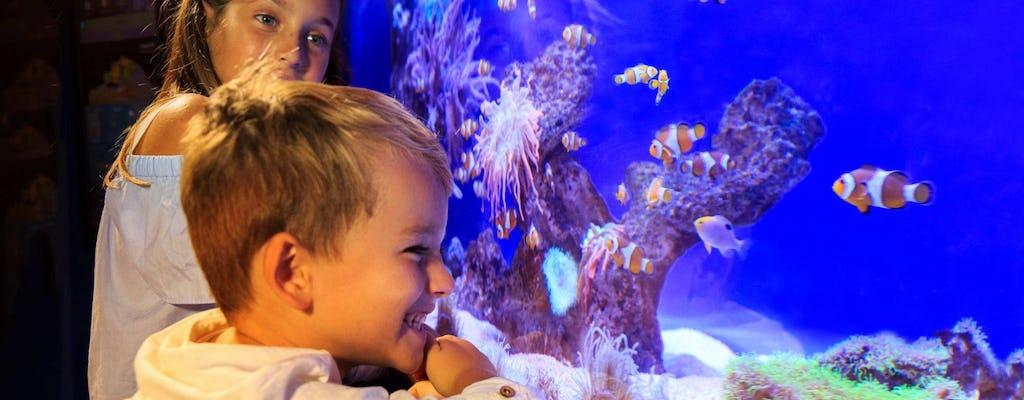 Billets coupe-file pour l'aquarium de Palma